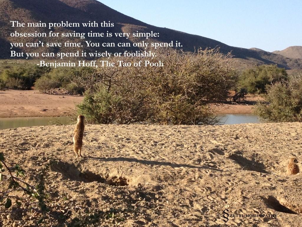 meerkat hoff